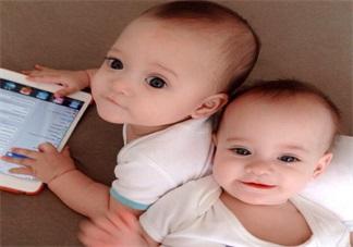 二胎怀双胞胎的概率这么高 二胎怀孕双胞胎怎么办