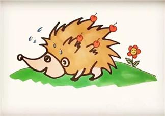 儿童小动物简笔画 森林里的小刺猬简笔画